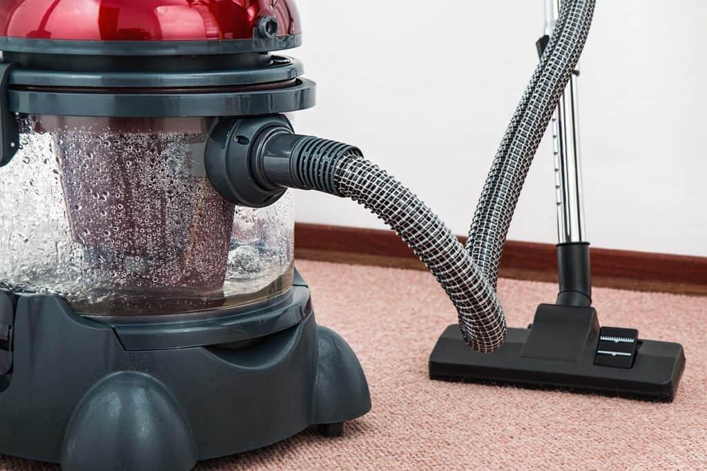 vacuum cleaner and carpet
